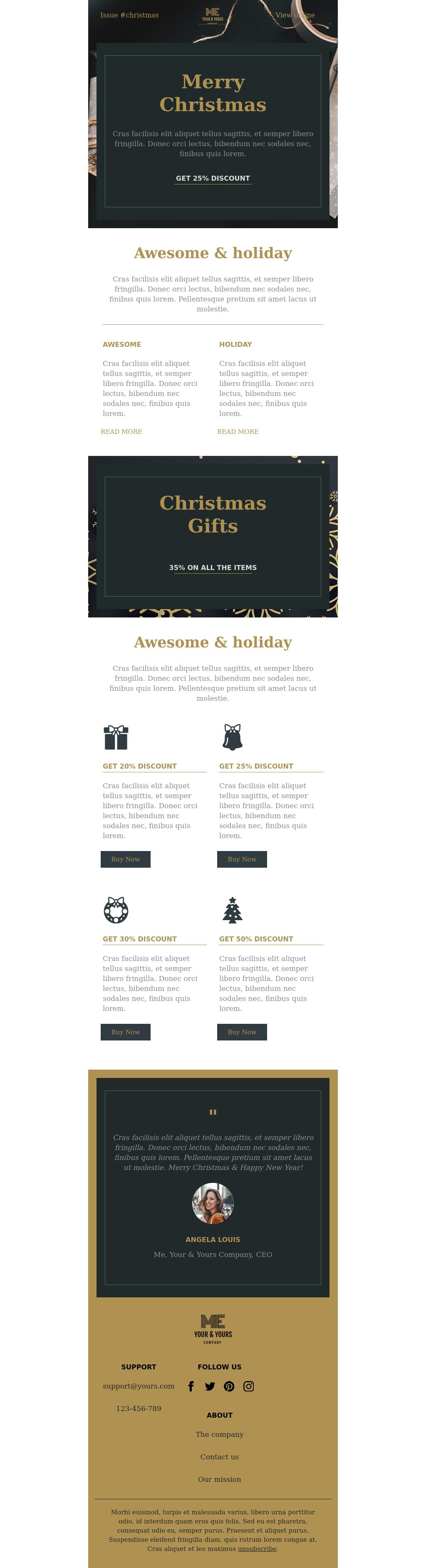 Promo Newsletter Christmas Template