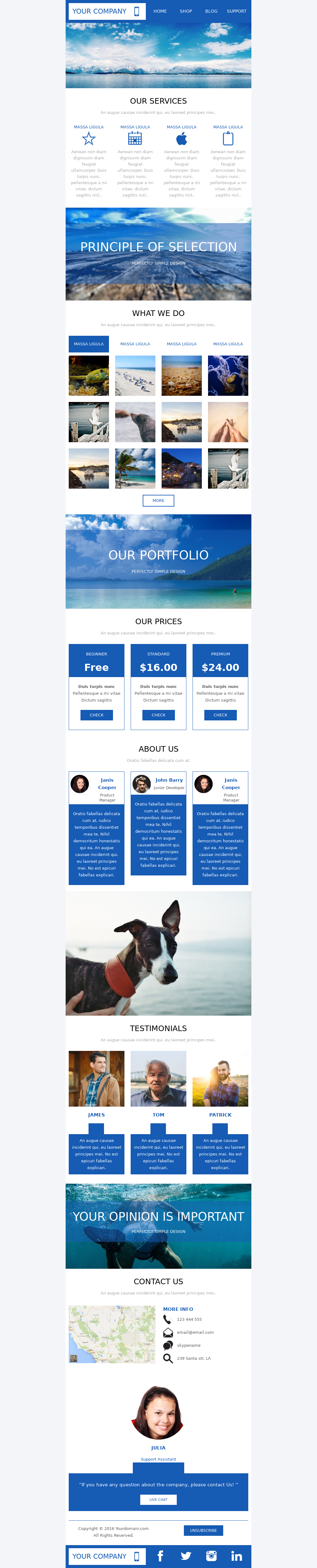 Free editable responsive B2B newsletter email template