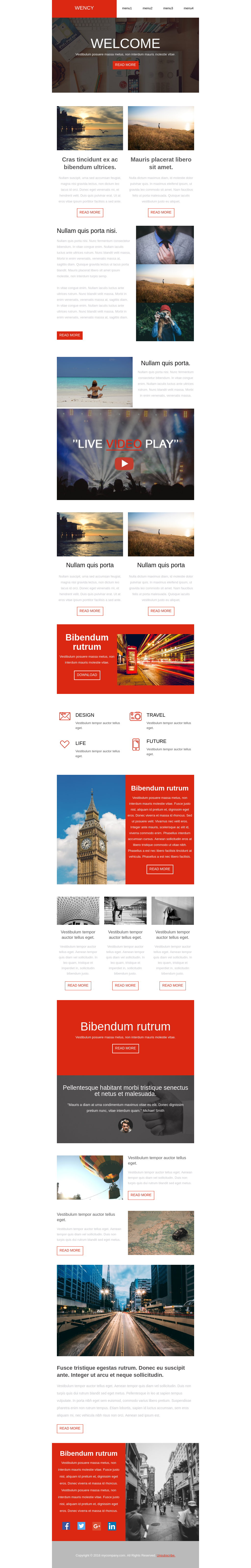 Clean corporate style mobile-friendly newsletter template