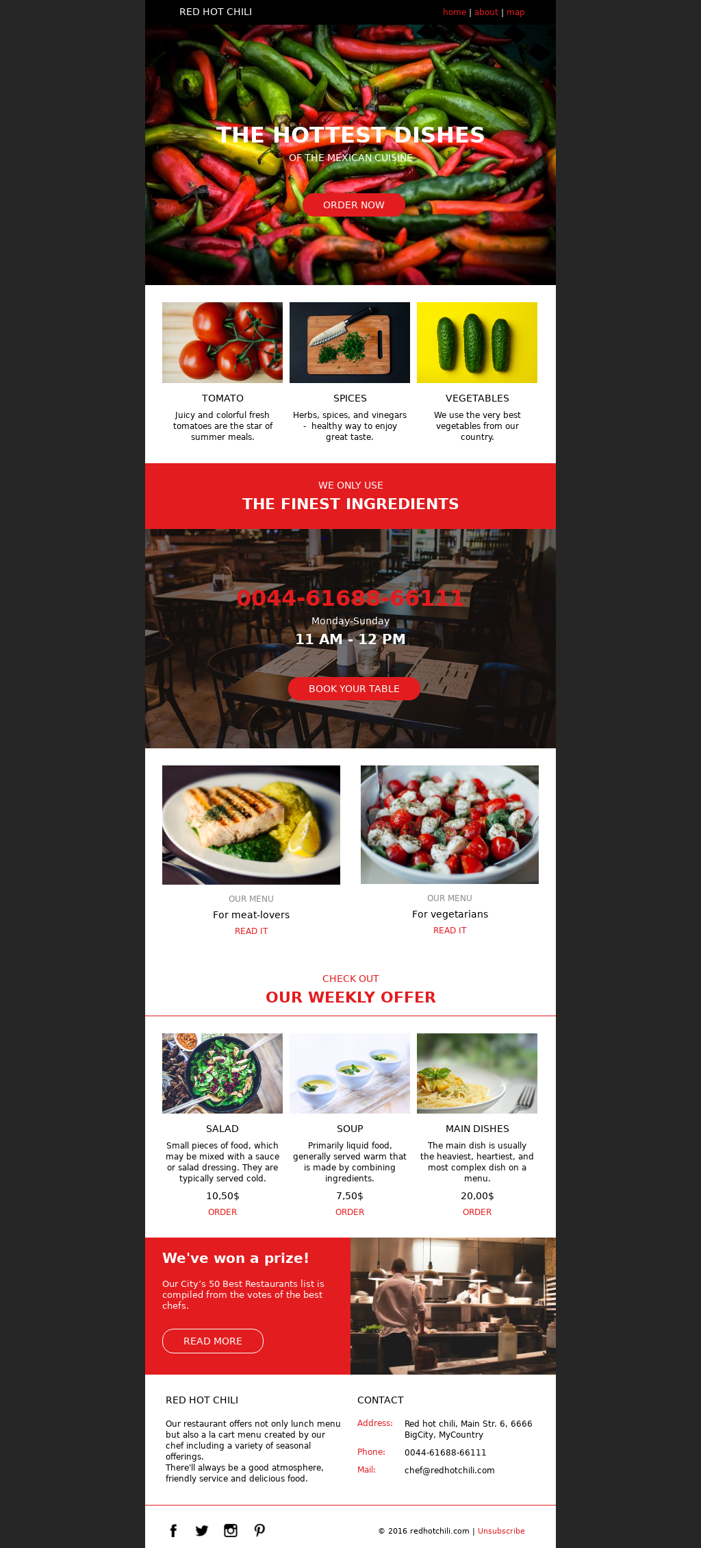 Catering and food service email template