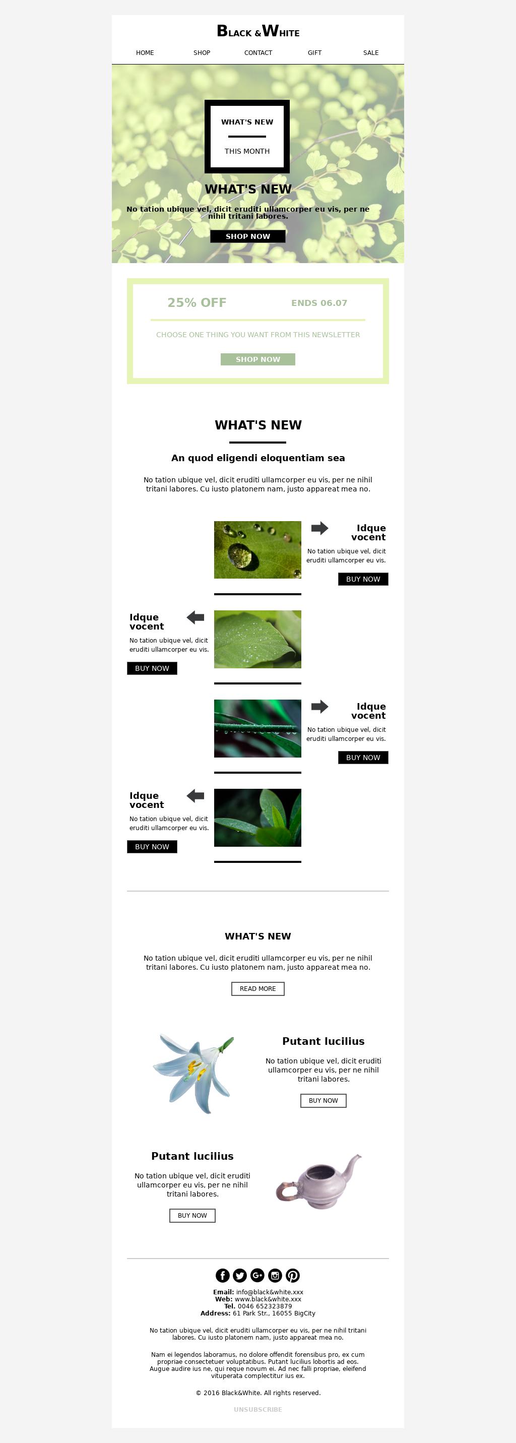 Spring e-commerce seasonal newsletter