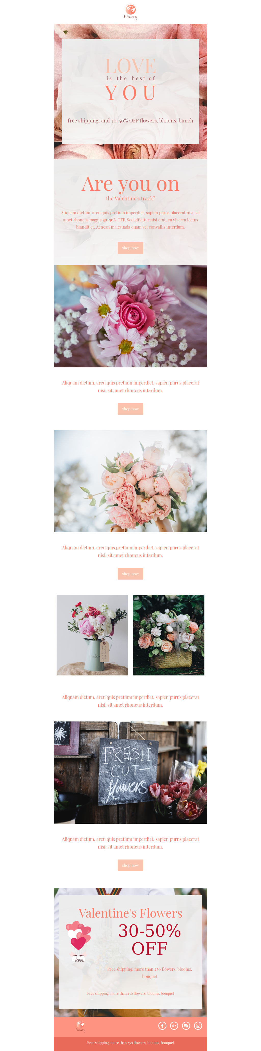 Valentine's Day Flowers Email Template