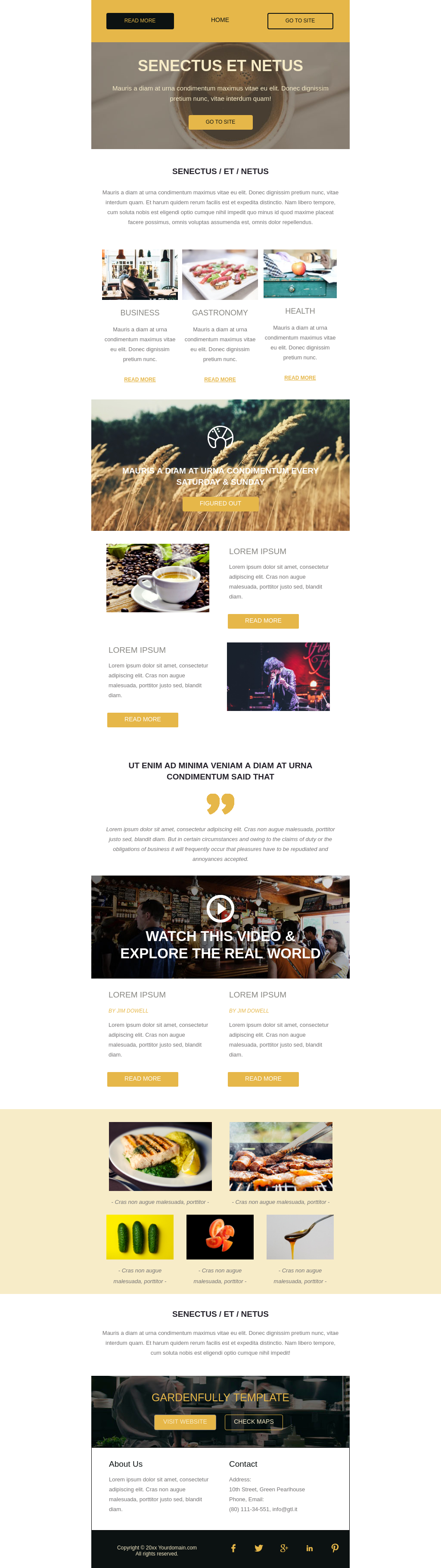 Yellow accent gastro theme business newsletter email template